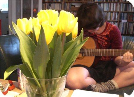 tulipaner.jpg