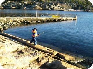fisker2.jpg